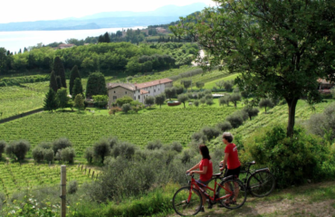 bike tour winery venetto