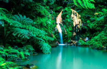 Azores waterfall